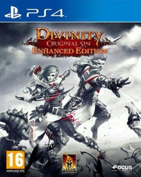 Divinity: Original Sin - Enhanced Edition PL PS4
